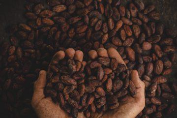 Chocokada-vous-dévoile-les-bienfaits-du-chocolat-sur-notre-sante